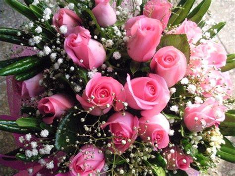 i fiore elenco dei fiori pi 249 profumati mondo