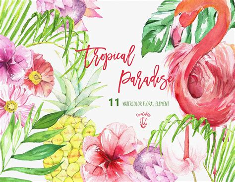 tropical clipart tropical paradise illustrations