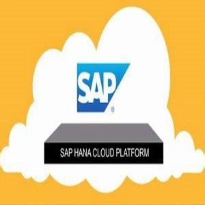 hana cloud sap hana cloud platform guida l innovazione business