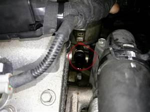 Oil Pressure Switch Location