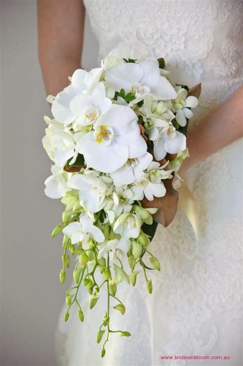 bg teardrop bouquet featuring phaeleonopsis orchids