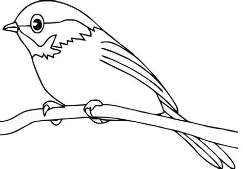 bird outline drawing   clip art