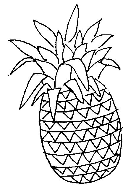 pineapple outline vector pineapple outline free clipart images clipartix