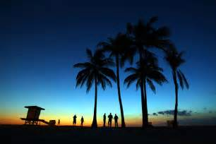 Beach Sunset with Palm Trees