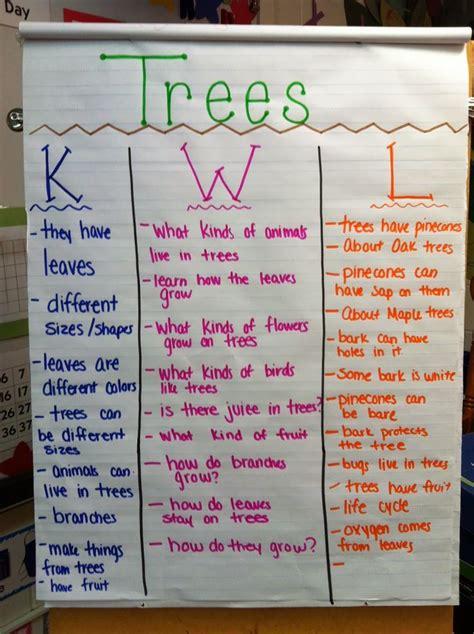 trees kwl chart prek pinterest creative curriculum