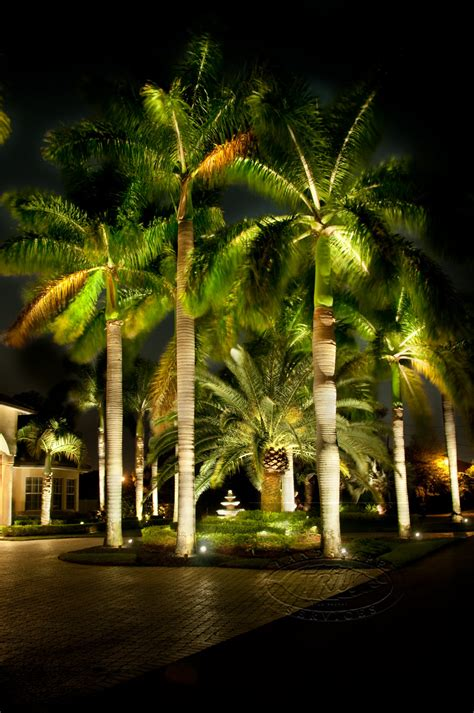 low voltage lighting landscape led lighting tru