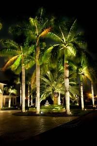 low voltage lighting landscape led lighting tru With high end low voltage outdoor lighting