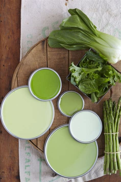 going green for the home living rooms paint shades