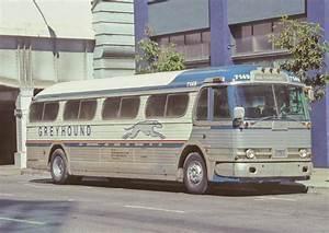 Bcx News Buses