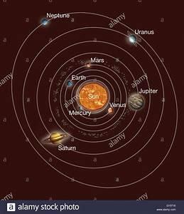 Solar System orbits. Artwork of Earth's solar system ...