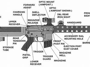 Which Ar