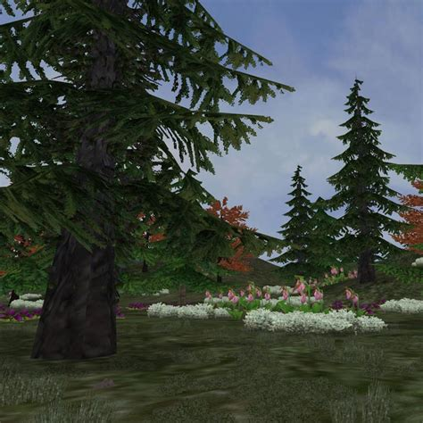 Boreal Forest Zoo Tycoon Wiki Fandom Powered By Wikia