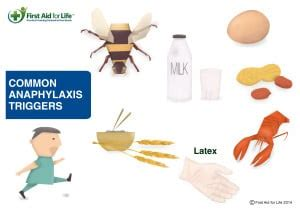anaphylactic shock  acute allergic reaction  aid