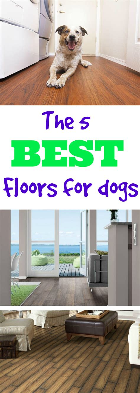 best kitchen flooring for dogs what s the best flooring for dogs flooringinc 7715