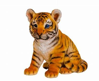 Animal Transparent Wild Clipart Animals Realistic Tiger