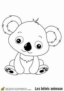 coloriage bebe koala hugolescargotcom With couleur pour un salon 8 chambre dhugo photo 14 chambre thame jungle