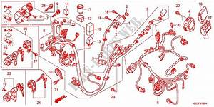 Wire Harness  Battery For Honda Vision 110 2012   Honda
