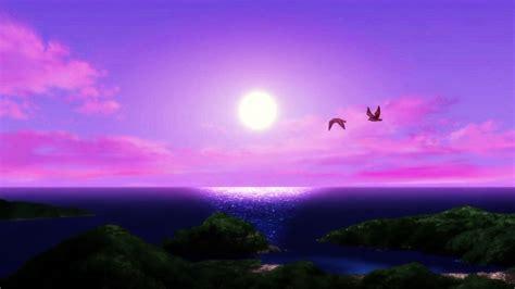 Purple Sunset Wallpaper Wallpapersafari