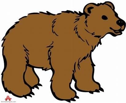 Bear Clipart Clipground Cliparts