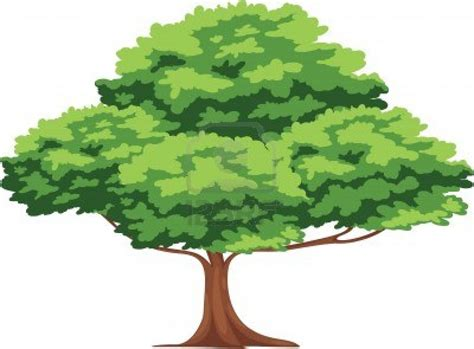 Free Tree Vector Png, Download Free Clip Art, Free Clip