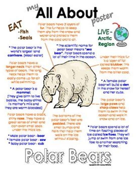 polar bears book arcticpolar animals