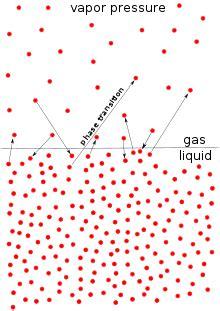 vapor pressure wikipedia