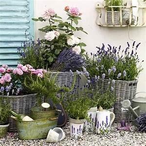 uber 1000 ideen zu franzosische blumen auf pinterest With französischer balkon mit garten und landschaftsbau buch