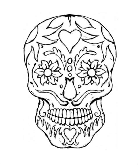 skull drawing template    documents