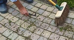 Comment Enlever Les Mauvaises Herbes : solutions efficaces pour liminer les mauvaises herbes de ~ Melissatoandfro.com Idées de Décoration
