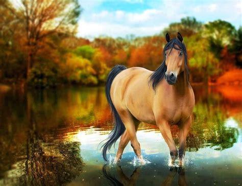 red horse wallpaper widescreen hd   horses