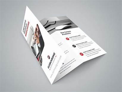 Brochure Tri Fold Creative Professional Minsk Brochures