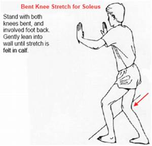 Pics For > Soleus Exercises
