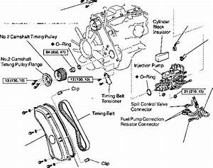 Diagram  1kz Te Motor Diagram Full Version Hd Quality