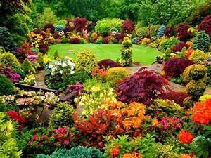 Jardin coloré : Idées et inspirations pour garnir son