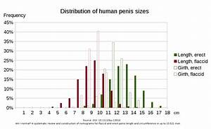 File Human Penis Sizes Svg