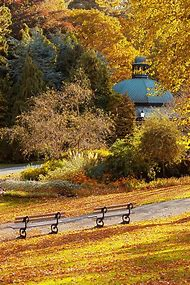 Fall Landscape Autumn