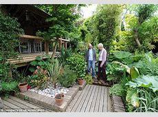 Man creates exotic paradise garden with banana plants and
