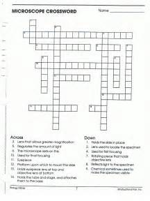 Holt Biology Worksheets Biology Word Search Puzzle Galleryhip Com The Hippest Pics