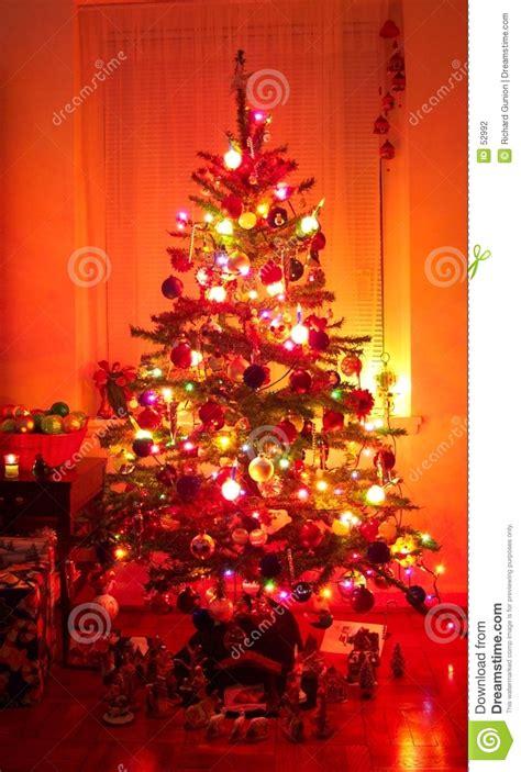 holiday christmas tree stock photography image 52992