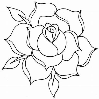 Outline Rose Drawing Rosas Line Flores Rosa