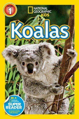 koala gifts  collectibles kritters   mailbox