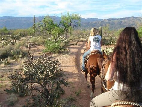 riding horseback houston tucson arizona az attractions tripadvisor stables go things did know