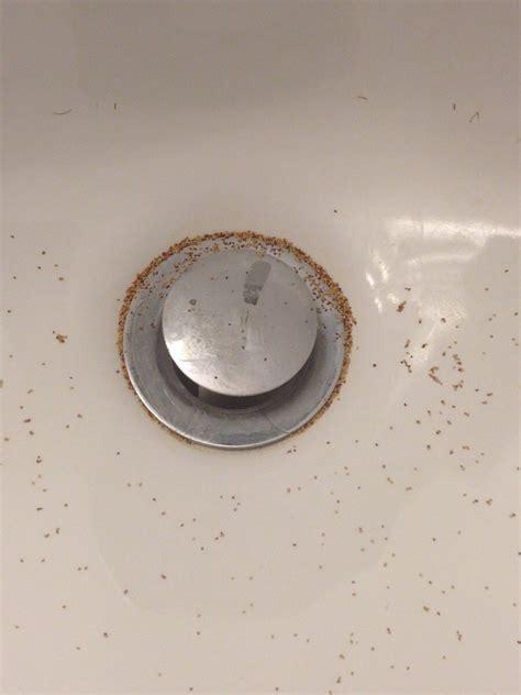 whats    bathroom sink   morning