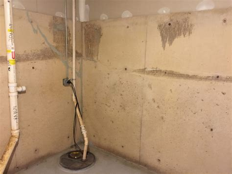 Painting Basement Walls With Mold And Mildew Proof Paint