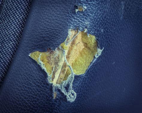 reparer canape simili cuir reparation canape simili cuir 100 images emp 234 cher un chat de griffer tout pratique ম