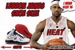 What Size Shoes Does Lebron James Wear?