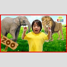Learn Zoo Animals Names For Kids  Educational Video For Children With Ryan Toysreview Youtube