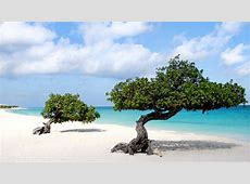 Download Aruba Beach Wallpaper Gallery