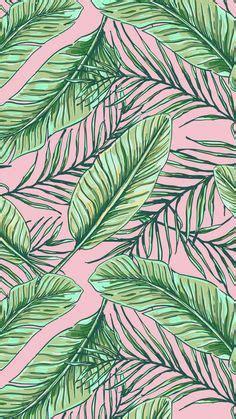 fond decran palmier pinterest palmiers ecran