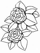 Coloring Flower Peony Pages Flowers Printable sketch template